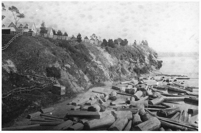 Freemans Park | Freemans Bay - Historical Photographs of